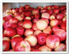 "Our Little Acre: ""SweeTango® Apple - Let Your Taste Buds Dance!"""