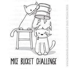 Mice Bucket Challenge