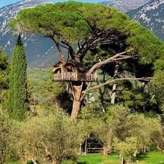Une cabane incroyable et luxueuse