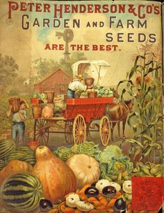 Early Settler Farming | In celebration of National Farmers Market Week we present an image ...
