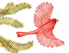 BUY 2 prints  and get 1 FREE sale Cardinal print by TevaGallery, $18.00