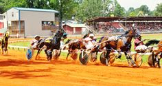 Horse Carriage Races at the Neshoba County Fair in Mississippi known as The Giant House Party and was founded in the late 1800's.