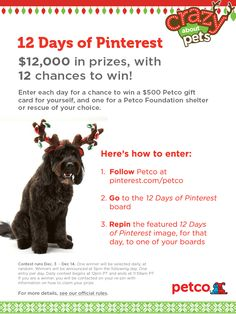 "Spread holiday cheer this year with Petco's ""12 Days of Pinterest"" repin contest.  Winners will receive a 500 dollar gift card for themselves, plus another 500 dollar Petco gift card will be donated on their behalf to a Petco Foundation shelter/rescue of their choice.  Click on the image for full contest rules!"