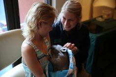 A recent visit to bring Healesville Sanctuary to the children at Monash Children's Hospital