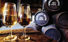 Sherry wineglasses at a Jerez winery