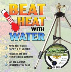 Beat that summer heat with water! Keep your plants hydrated with these helpful tips. Read full article: http://www.menards.com/main/c-14341.htm?utm_source=pinterest&utm_medium=social&utm_content=summer_garden_care&utm_campaign=gardencenter