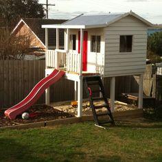 Backyard beginnings...