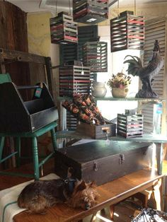 Where to eat and antique shop in High Falls, New York