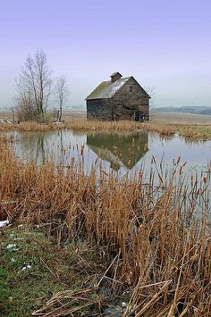 Barn By Pond In Illinois