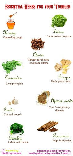 Essential Herbs for your toddler