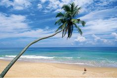 Beach | Flickr - Photo Sharing!