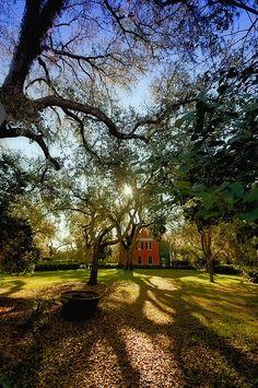 Shadows On The Teche Plantation - New Iberia, Louisiana