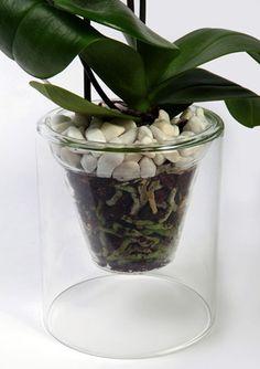 Macetas para orquíde