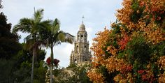Balboa Park: the nation's largest urban cultural park. Home to 15 major museums, renowned performing arts venues, beautiful gardens & the San Diego Zoo, the Park has an ever-changing calendar of museum exhibitions, plays, musicals, concerts & classes. Park grounds are open 24 hours. The Visitors Center is Open from 9:30am-4:30pm daily and offers brochures, maps, audio tours, free guided tours of the Park, transportation info, dining advice, & more. 1549 El Prado, Balboa Park, San Diego, CA 92101