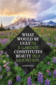 Victor Hugo #quotes