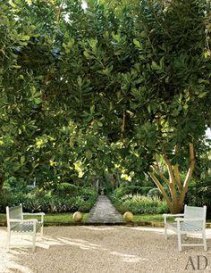 Oscar de la Renta's garden in the Dominican Republic.  Photo: William Waldron