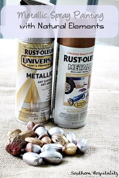 Metallic spray paint for acorns and nuts for the Holidays!