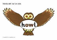 Words with 'ow' on owls
