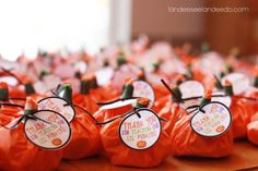Thank you for teaching our little punkins!