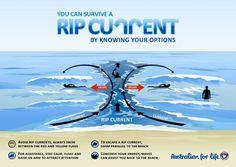 Surf Life Saving Queensland - Rips