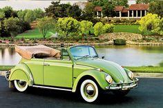 vw beetle convertible green