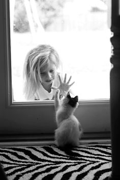 Kitten and little girl - hand to paw.....