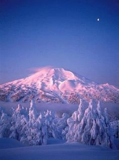 Mt Bachelor at Bend, Oregon - Used to ski here in the spring and early summer New Houses, Mountain, Bend Oregon, Blue Skies, Life Changing, Central Oregon, Bendoregon, Place, Oregon Travel