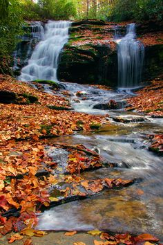 Merry Falls with autumn leaves - #waterfall in the North Carolina mountains near DuPont State Forest north carolina mountains, autumn leaves, forest
