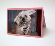 Funny Get Well Card Cairn Terrier Sick Card Feel by Lillyzcardz, $4.00