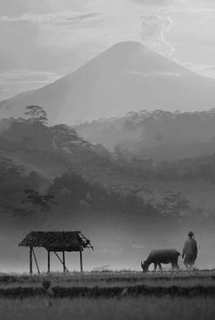 © Budi Yuwono, under mountain.