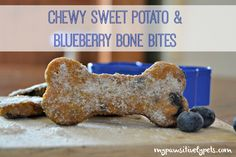DIY Delish for Dogs: Chewy Sweet Potato and Blueberry Bone Bites Recipe