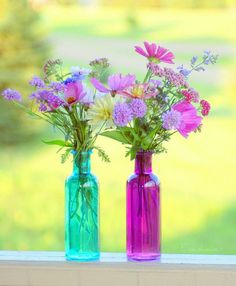 Flowers in colored bottles