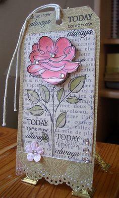 Raindrops on roses.., via Flickr.