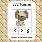 Over 100 Puzzles!!!  CVC, CVCe, Digraphs, Blends 100 puzzl