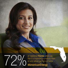 Strong bipartisan majorities of registered Florida voters support increased development of U.S. energy infrastructure.