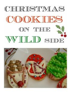 How to make wildlife Christmas biscuits