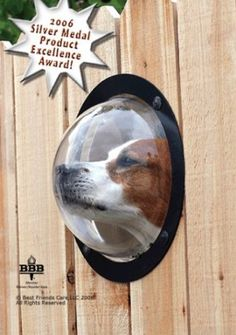 Dogs are curious animals. The dog peek window allows man's best friend to more effectively keep watch over his territory from that cowardly neighborhood cat, the conniving squirrel, or those annoying plastic bags that always fly by.