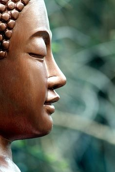 buddhism, spiritu, art photography, yoga meditation, zen, travel tips, field of dreams, inner peace, buddha