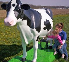 Niederman Family Farm in Butler County, Ohio. Enjoy farm tours, hayrides, planting the pumpkin patch, livestock, bonfire pits, barn rentals,  paintball courses, bed and breakfast inn and many seasonal events.