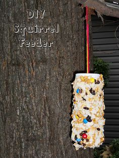 DIY//Squirrel Feeder  Posted by The  made a squirrel feeder it would distract