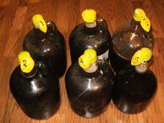 The Homestead Survival: Wine Making