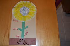 Plants and Seeds  http://teeatimeplayschool.blogspot.com/2012/03/parts-of-plant.html