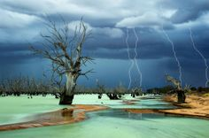 "Honorable Mentions of the National Geographic Photo Contest 2013 - Julie Fletcher's ""Graveyard"""