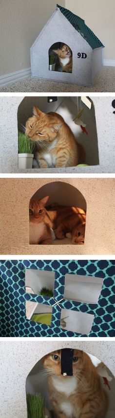Cat DIY: how to sew a cozy fabric cat house
