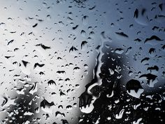 Google Image Result for http://1.bp.blogspot.com/-OxhkKviNOow/TmjCIFbjr8I/AAAAAAAAAXY/H9BXc_vIS5s/s1600/rain1.jpg