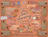 Seeds 4 All (blog)
