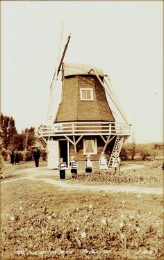 "Vintage postcard of the ""Old Dutch Mill"" in Sunken Gardens Park, Pella, Iowa."