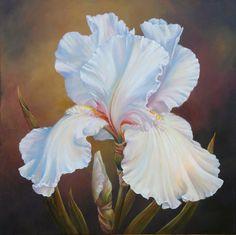 Marianne Broome — White Iris (720x719)