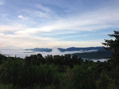 Morning mists at Heather Ridge Farm