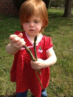 5 Easy Vegetables to Grow with your Kids this Summer | Teach them about health and nutrition by getting your hands dirty!